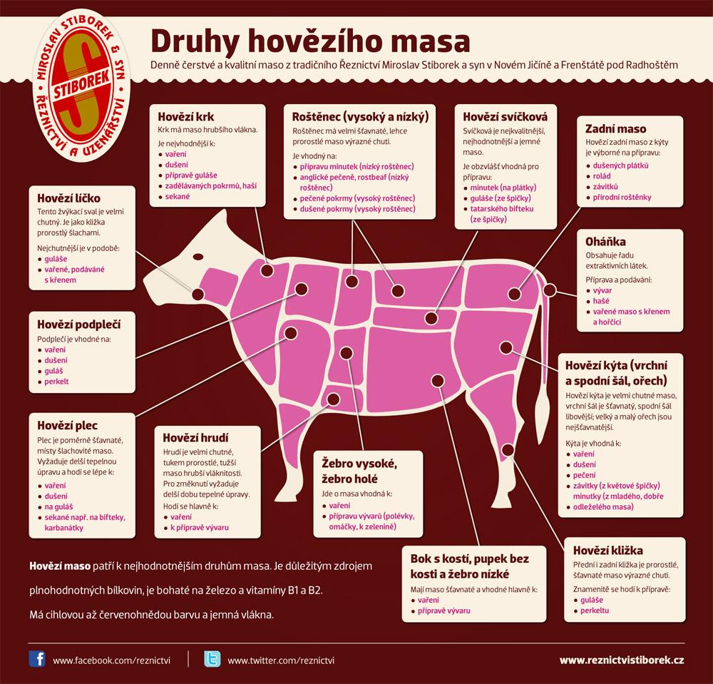 Infografika Ceskeinfografiky.cz